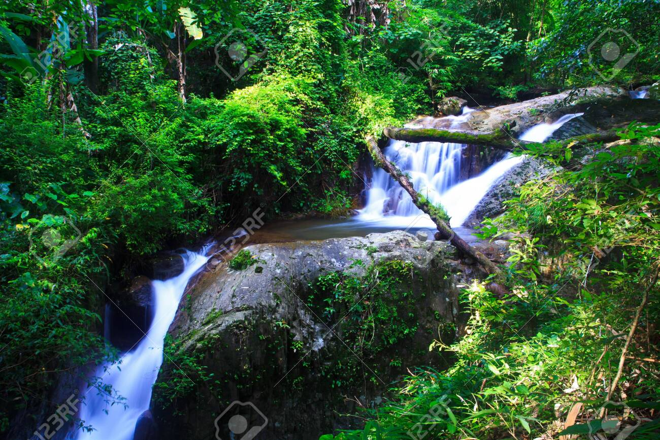 Waterfall in the forest asia thailand Stock Photo - 15848518