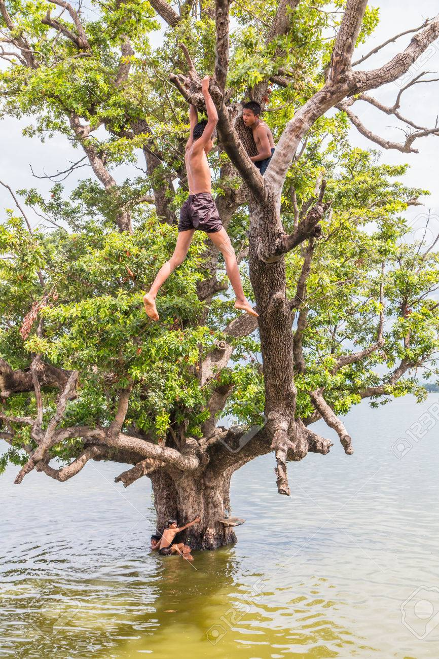 U Bein Bridge, Myanmar-Aug 26th, 2014: Myanmar children were playing by jumping from the tree at the river near U Bein Bridge where is the oldest and longest teak wooden bridge in the world. - 32389200