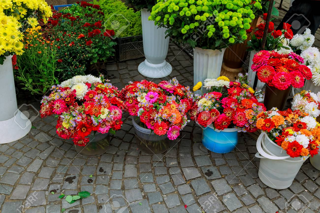 Flower Shop Outdoor Stand With Colorful Flower Pots Street Flower Stock Photo Picture And Royalty Free Image Image 72873144