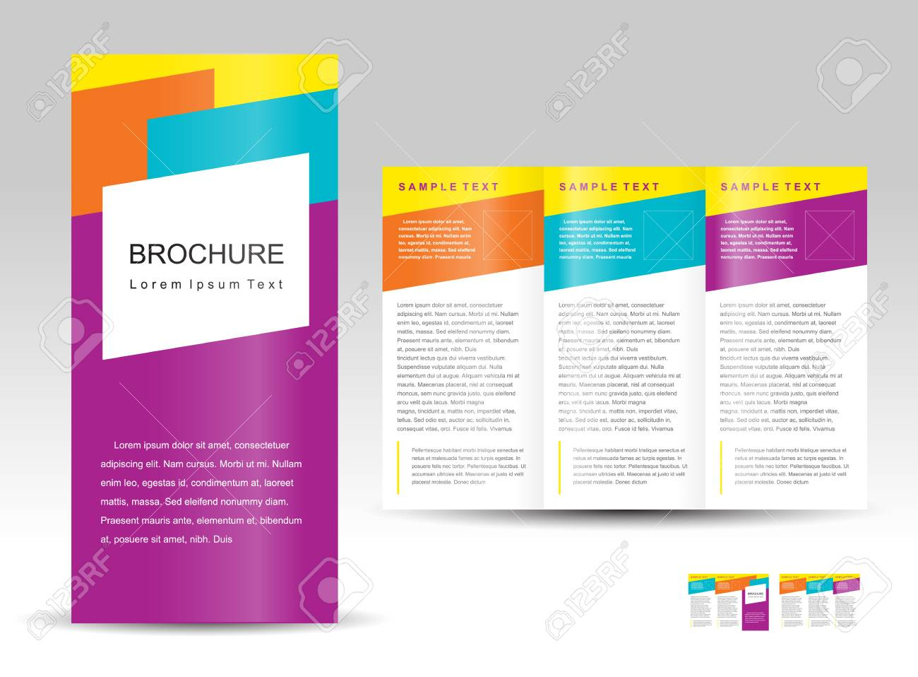 Vector brochure tri-fold layout design template colorful. - 97272151