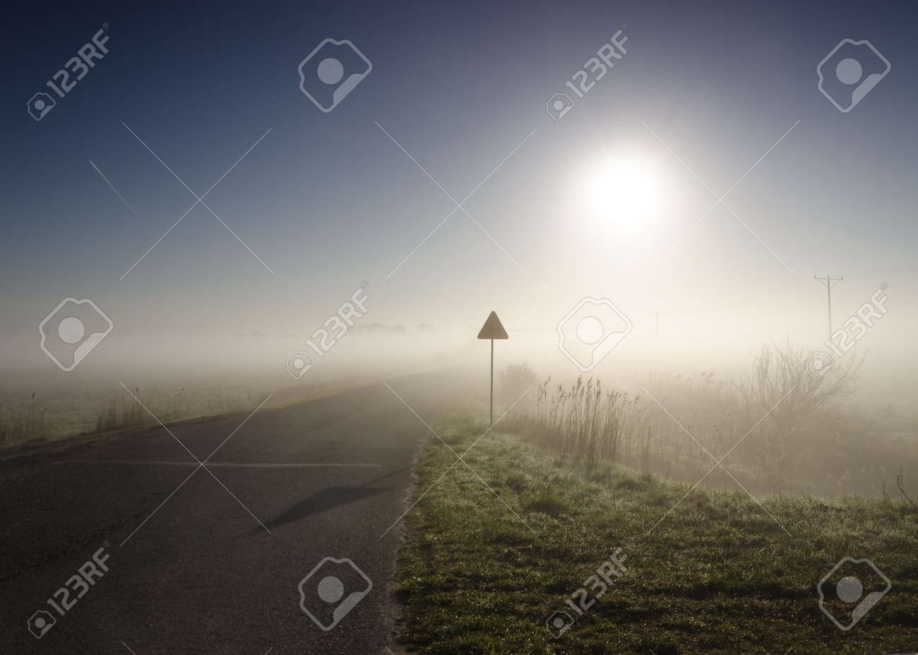 MISTY MORNING - Picturesque weather over the asphalt road - 169540989