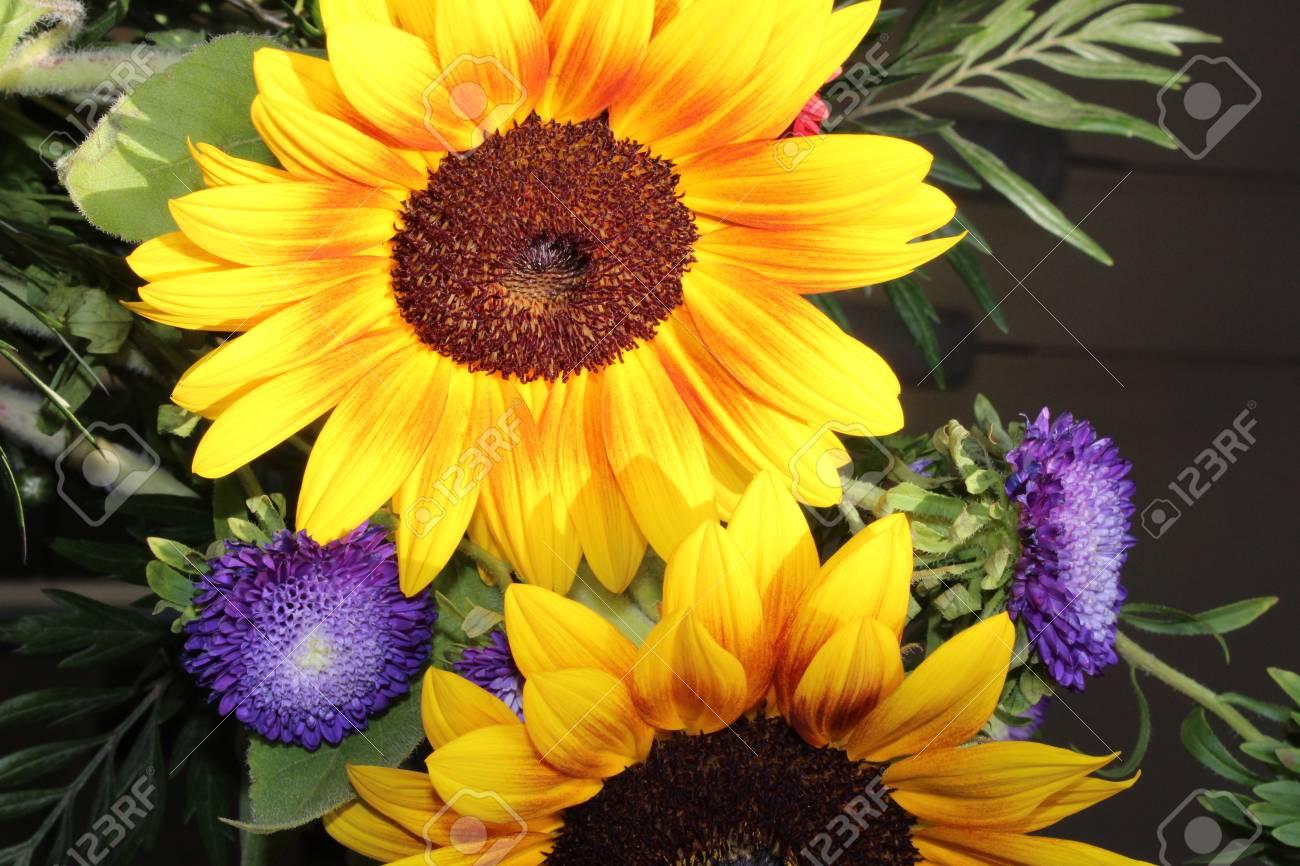 bouquet de tournesols, fleur décorative de tournesol closeup. banque