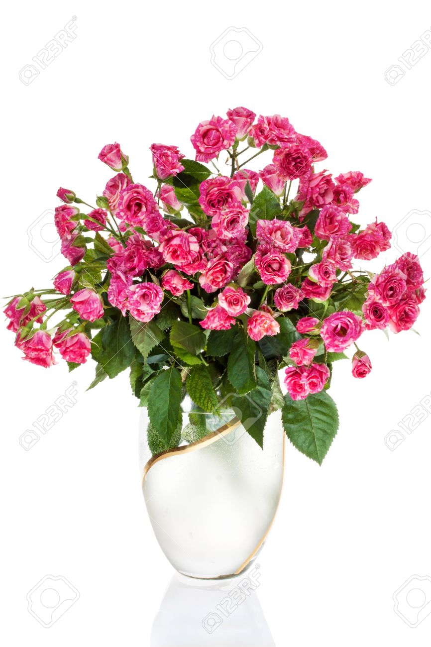 Bouquet Roses in vase, Isolated on white background Standard-Bild - 12966870