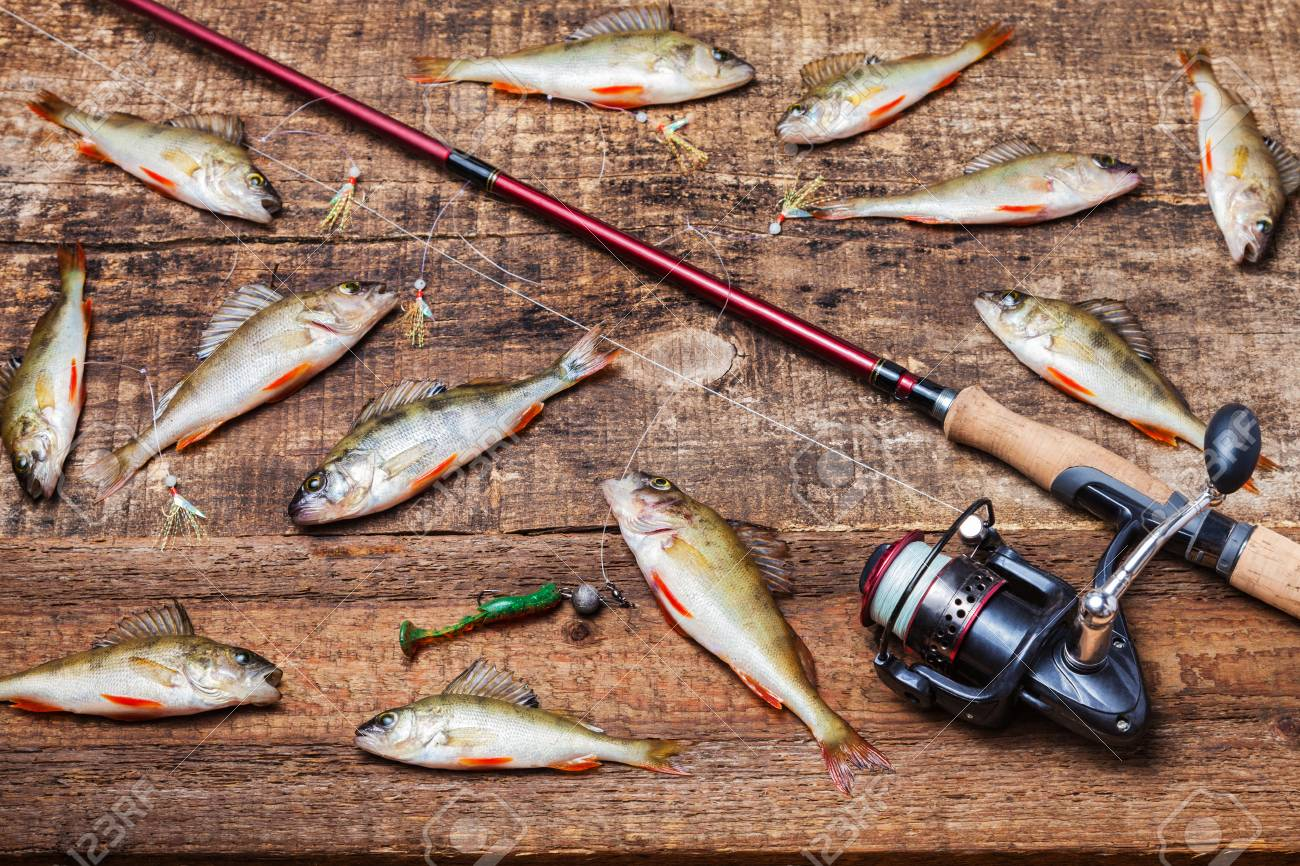 top bass fishing lures