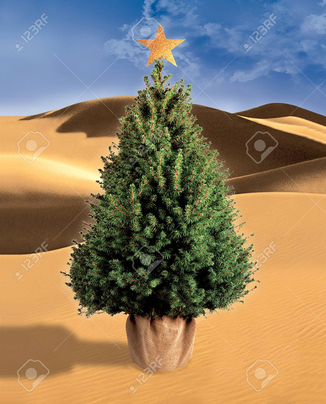 Christmas Tree In The Desert.Stock Illustration