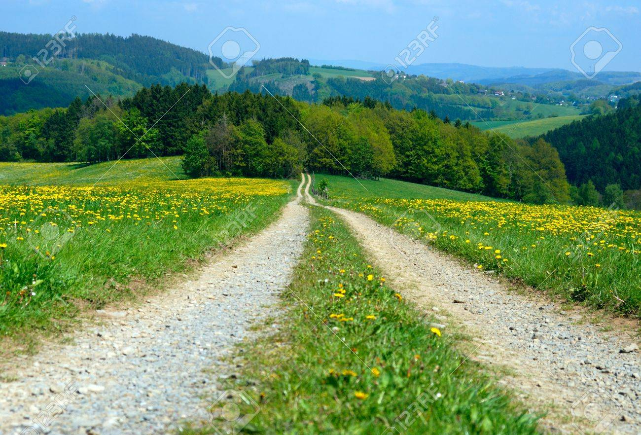 Country road under bright sunny blue sky Stock Photo - 9291343