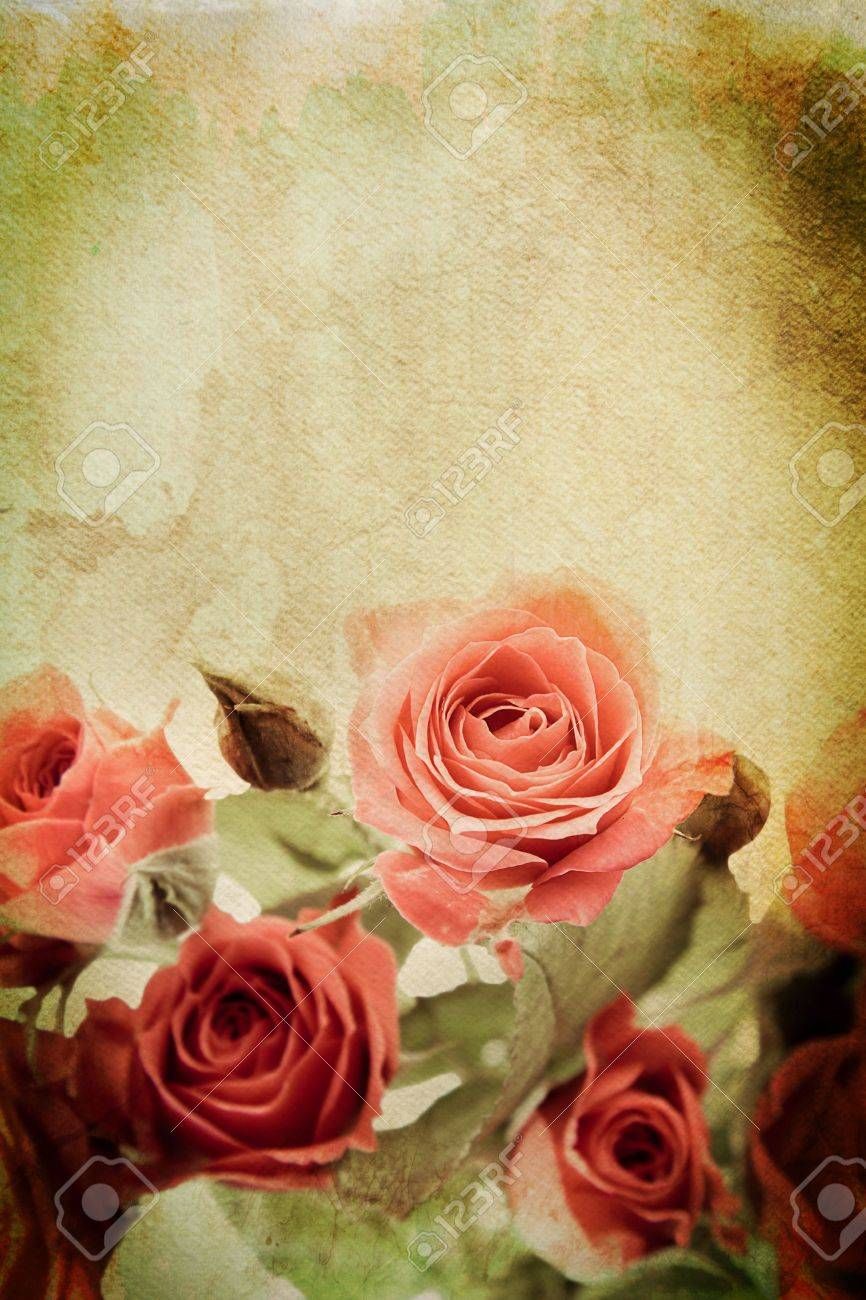 Vintage rose on watercolour background - 13783115