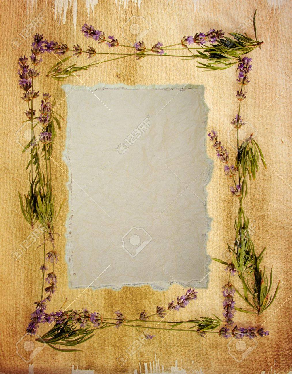 Watercolour lavender frame with a distressed vintage feel Sheet of aged watercolour paper in the centre for your message - 14044052