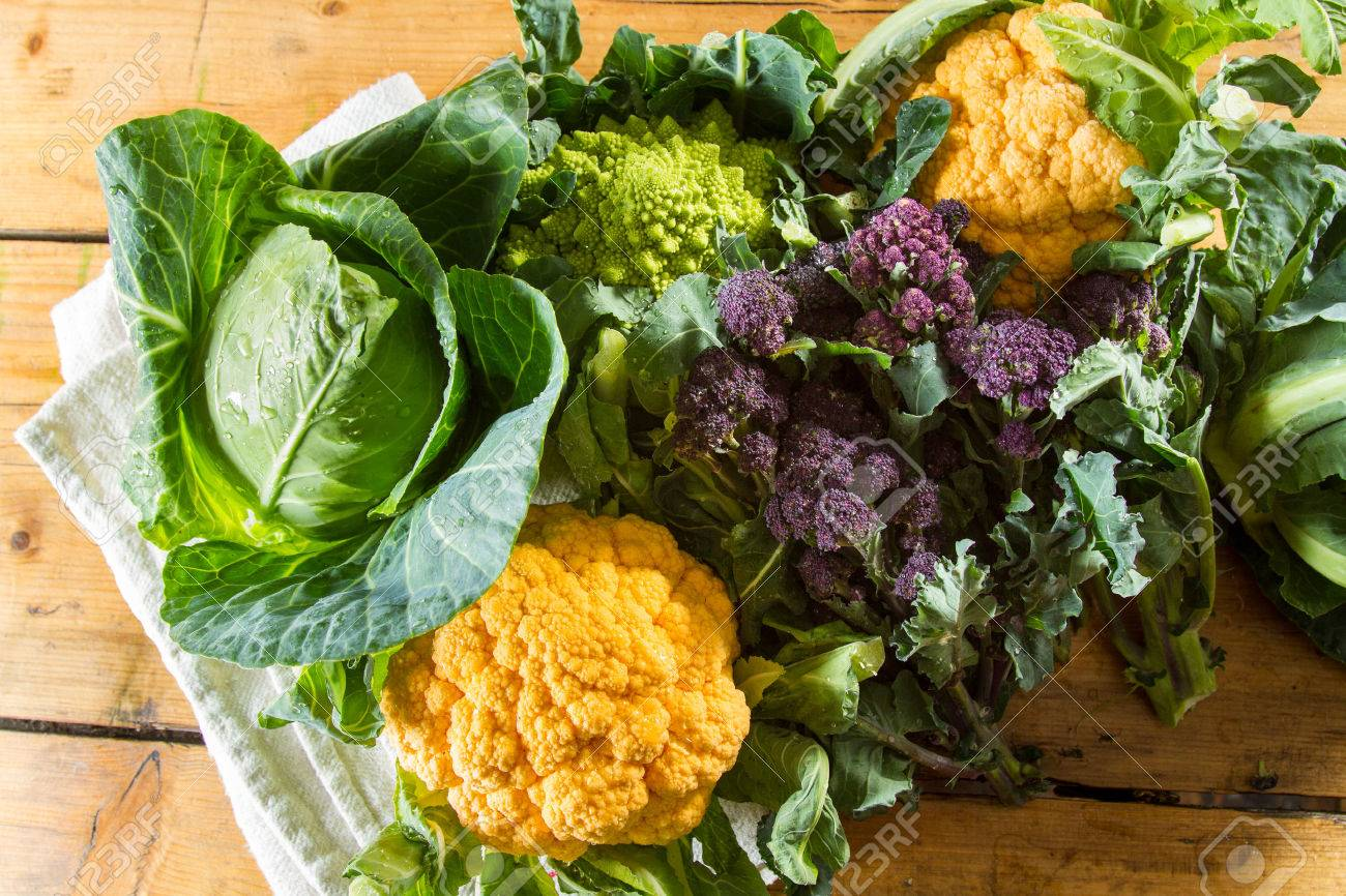 Cornucopia of vegetables from the brassicaceae family: yellow cauliflower, purple sprouting broccoli, cabbage, Romanesco cauliflower with its beautiful fractal shapes. - 50566355