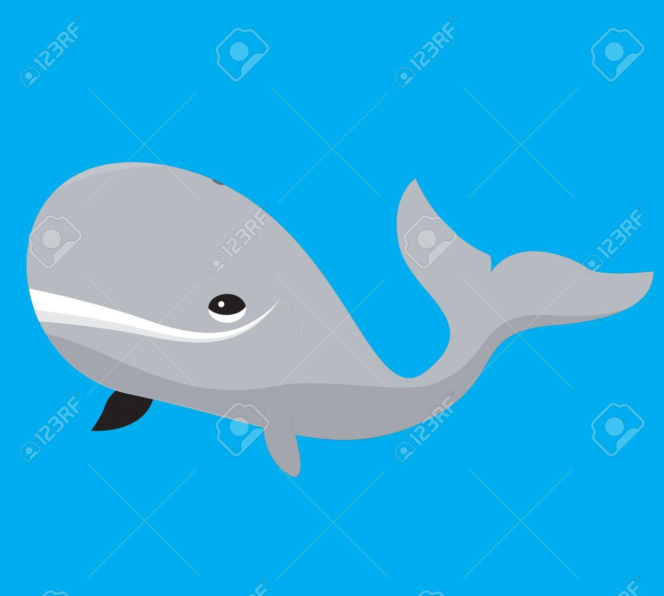 A illustration of a grey cartoon whale on blue background Stock Vector - 19511107