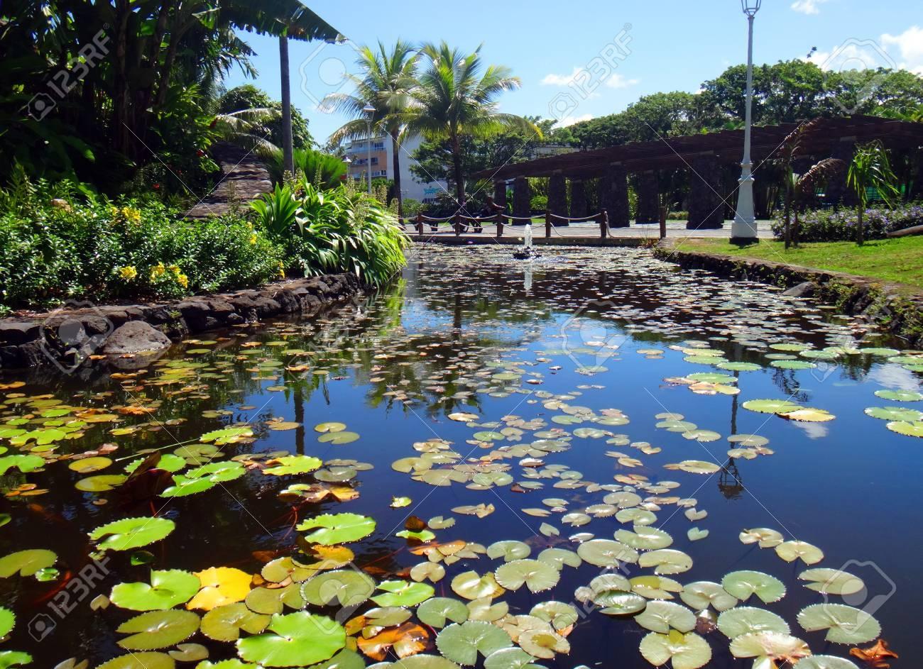 TAng à poissons d\'ornement des Jardins de Pa\'ofa\'i Jardin de Paofai à  Papeete, Polynésie française.
