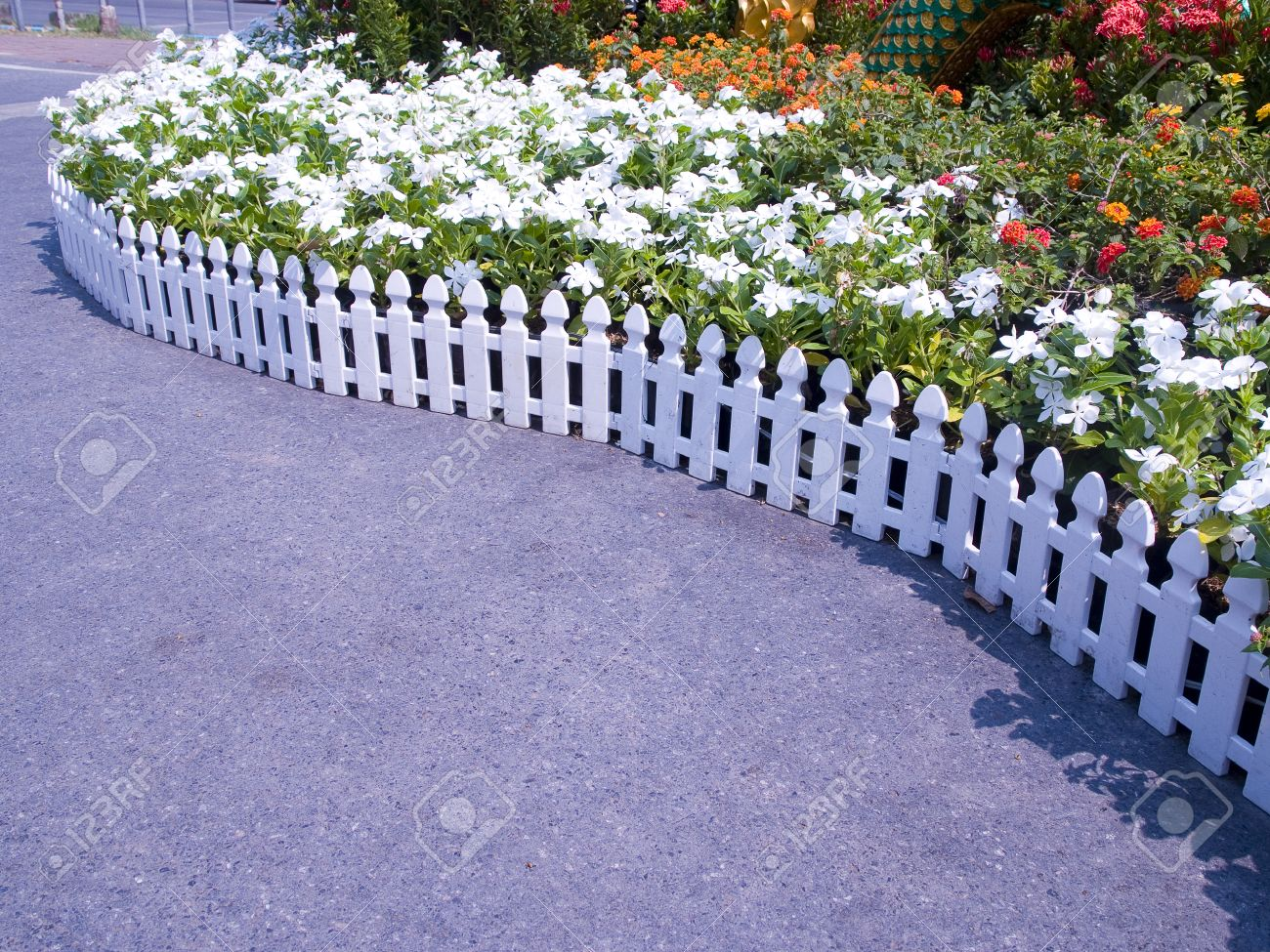 Kleiner Holzzaun a small garden is decoratedcut flower plants and wooden fence