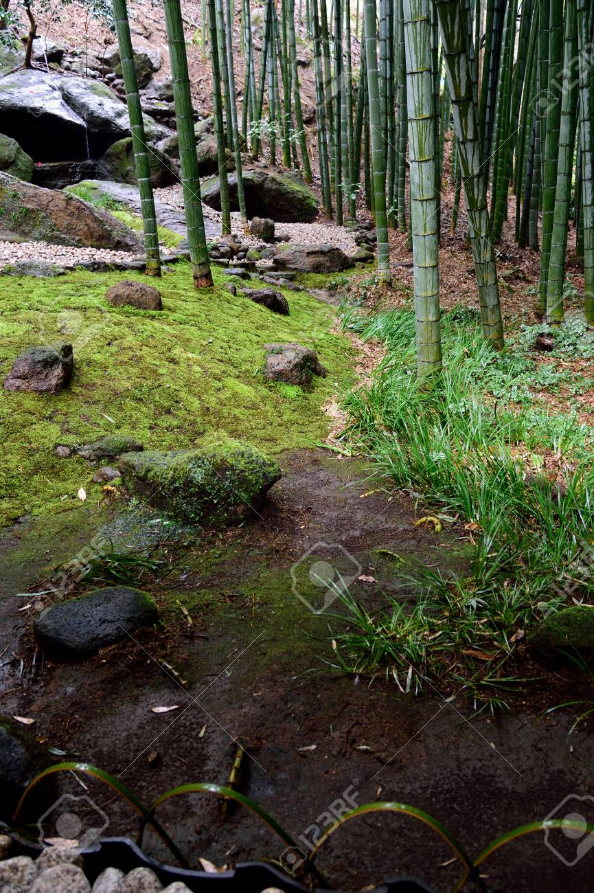 A Japanese Garden With Various Elements Such As Stones Rocks