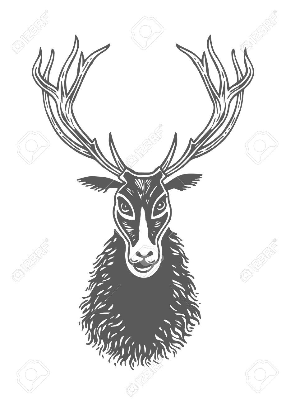 Dessin à La Main D Encre Face Cerf Noir Et Blanc Patte Empreinte D