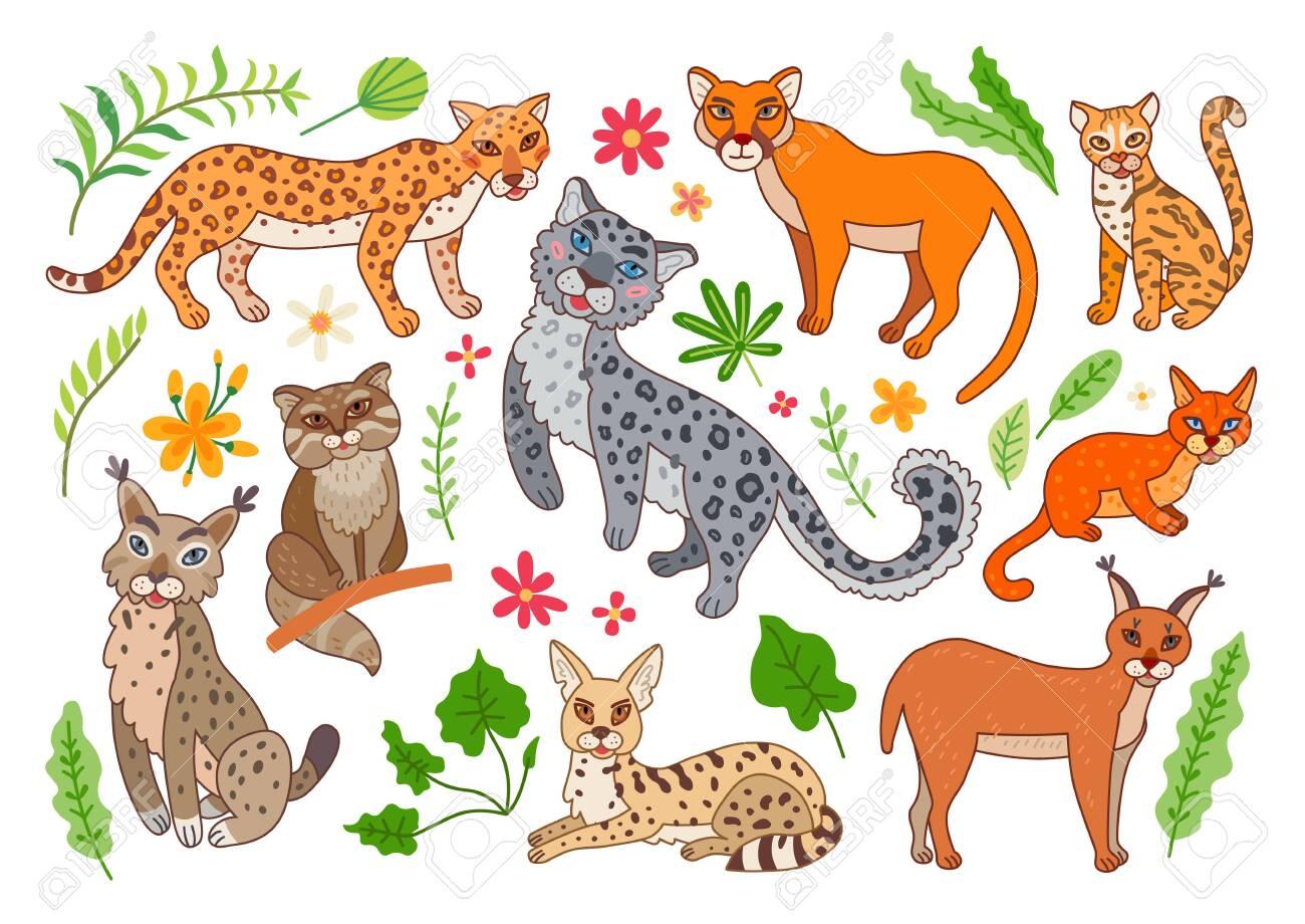Set of wild cats. Vector cartoon exotic animals - 139711340