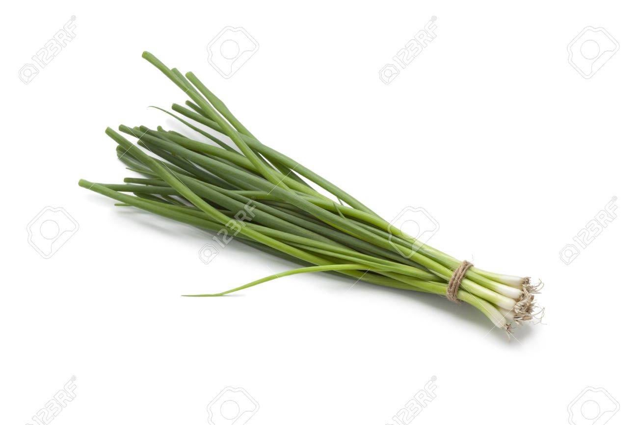 Small fresh green spring onions on white background - 14040845