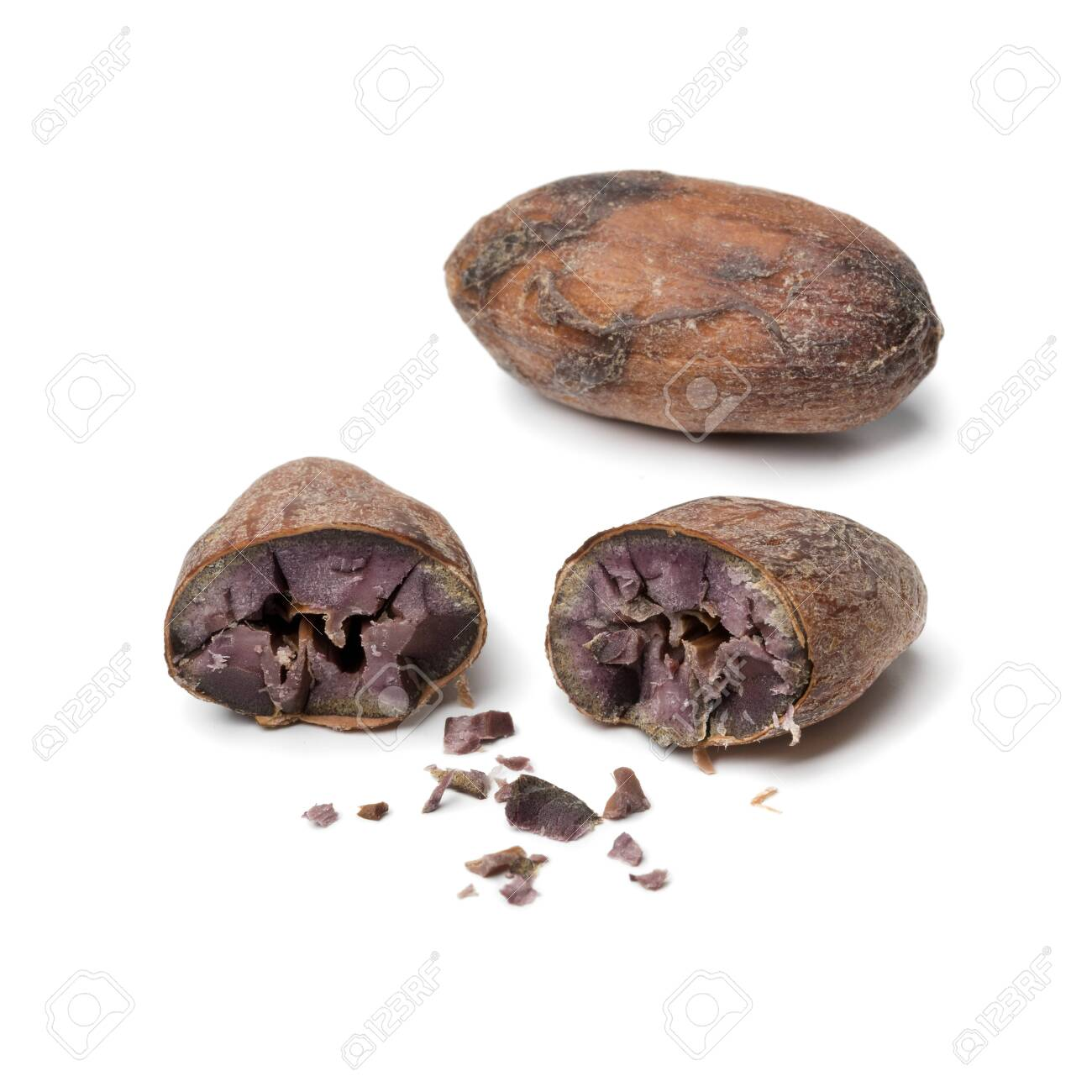 Whole and halved cocoa bean close up isolated on white background - 120613624