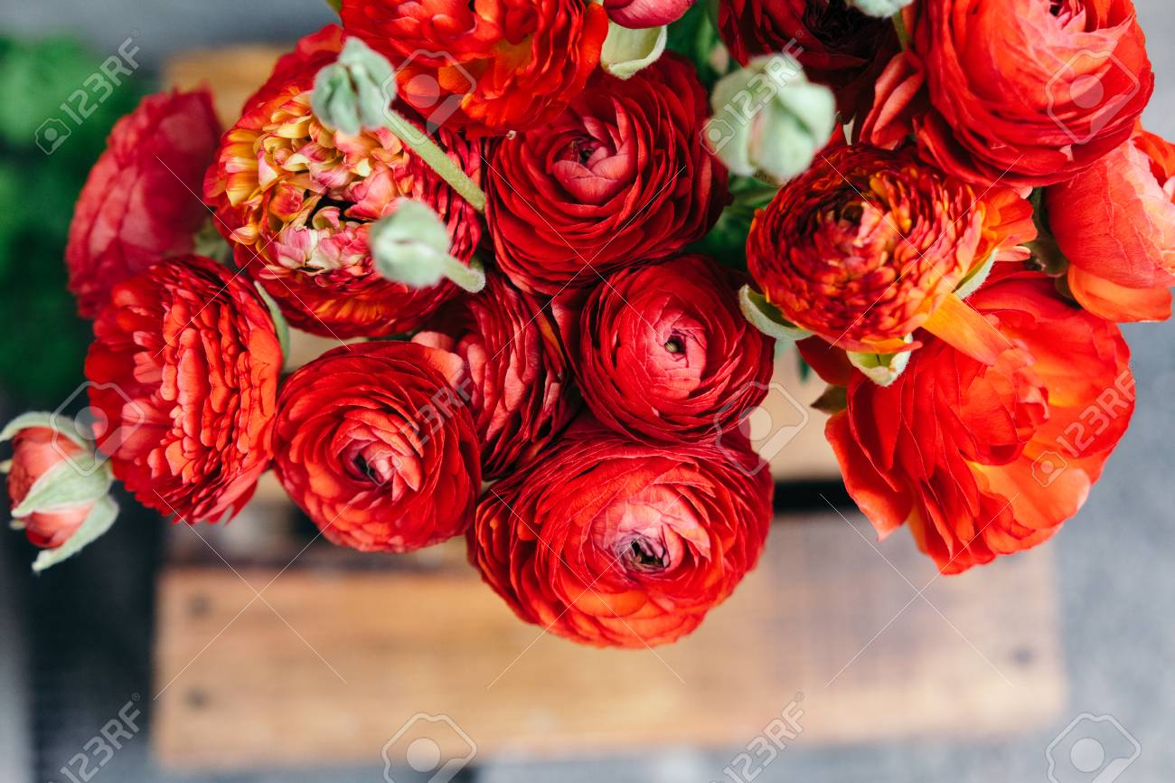 Bouquet Of Red Ranunculus Flowers On A Rustic Background Close Stock Photo Picture And Royalty Free Image Image 76399937