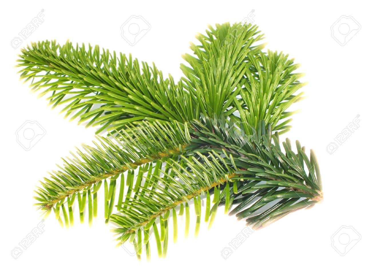 christmas Stock Photo - 14593982