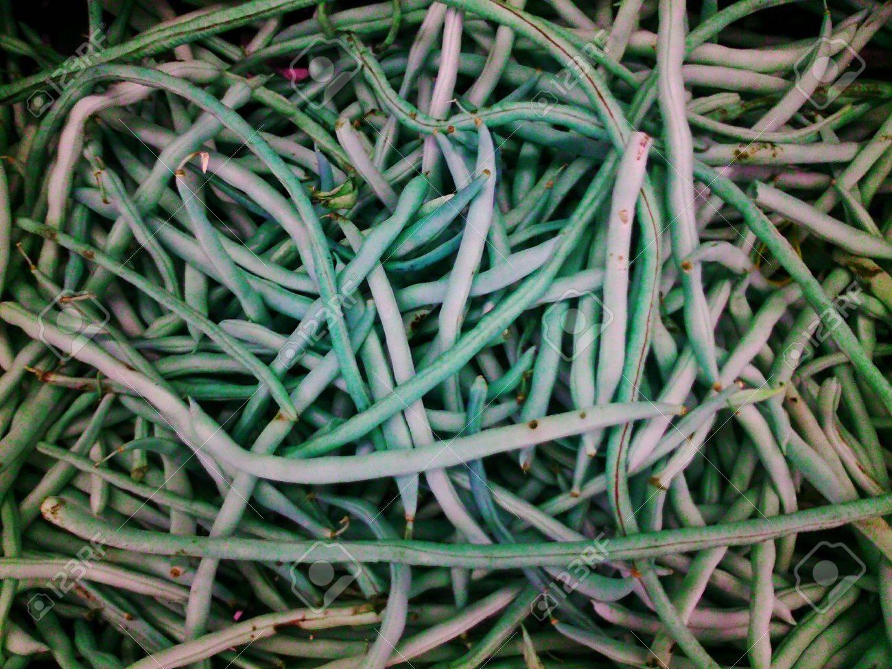 Closeup of fresh long bean Stock Photo - 24655857