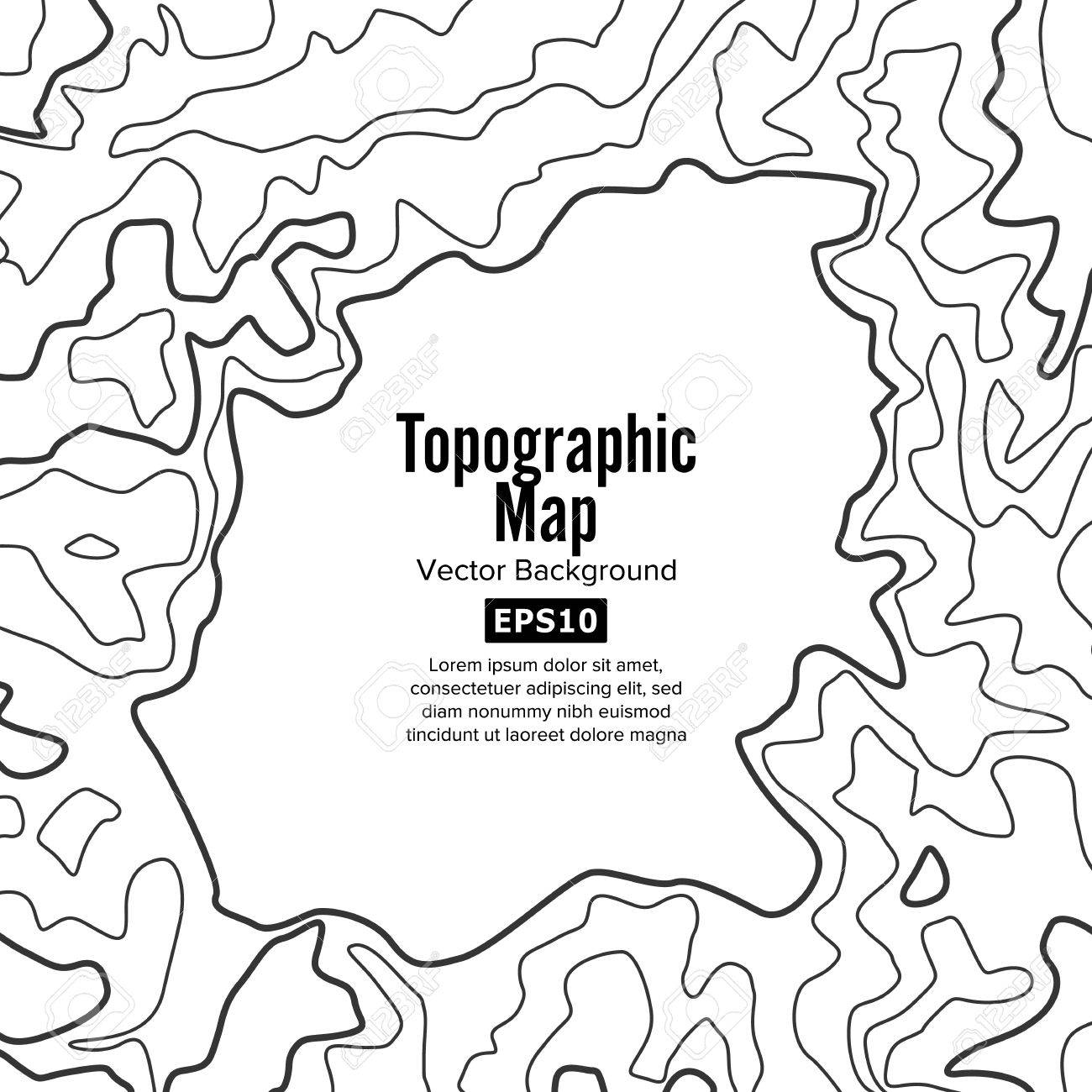 contour topographic map vector geography wavy backdrop cartography