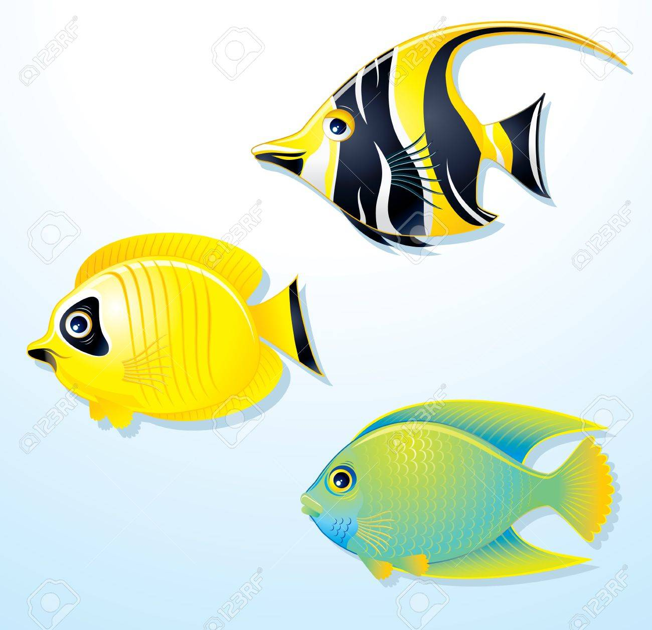 set of exotic tropical fish vector illustration royalty free