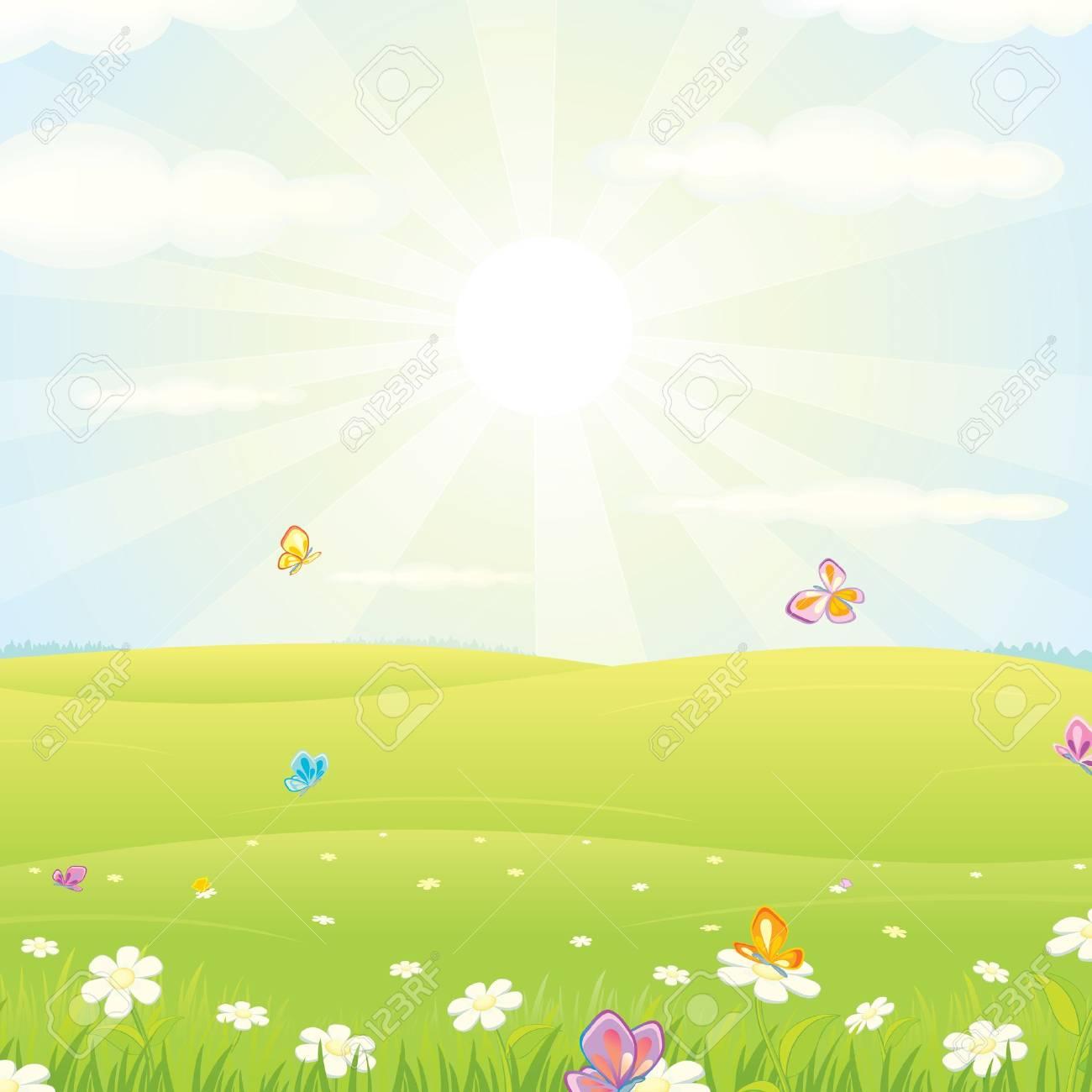 Summer Meadow Landscape Stock Photo - 18467158