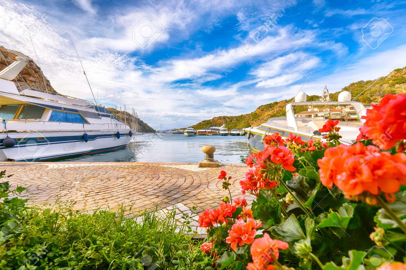Awesome view of Poltu Quatu port and bay with yachts and motorboats on Costa Smeralda. Popular travel destination of Mediterranean sea. Location: Poltu Quatu, Province of Sassari, Sardinia, Italy, Europe - 170378881
