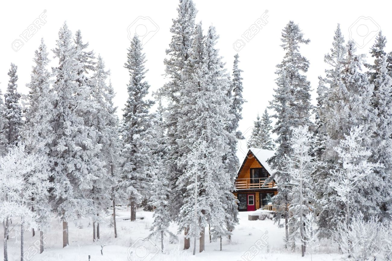 Christmas In The Woods.White Christmas In Winter Cabin In The Woods Between Snow Covered
