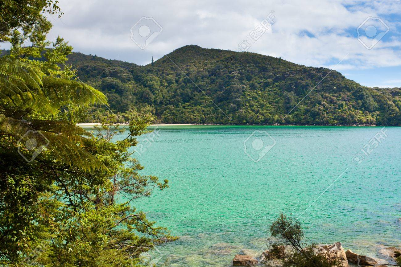 Tranquil bay framed by lush subtropical forest of Abel Tasman National Park, South Island, New Zealand Stock Photo - 13629643