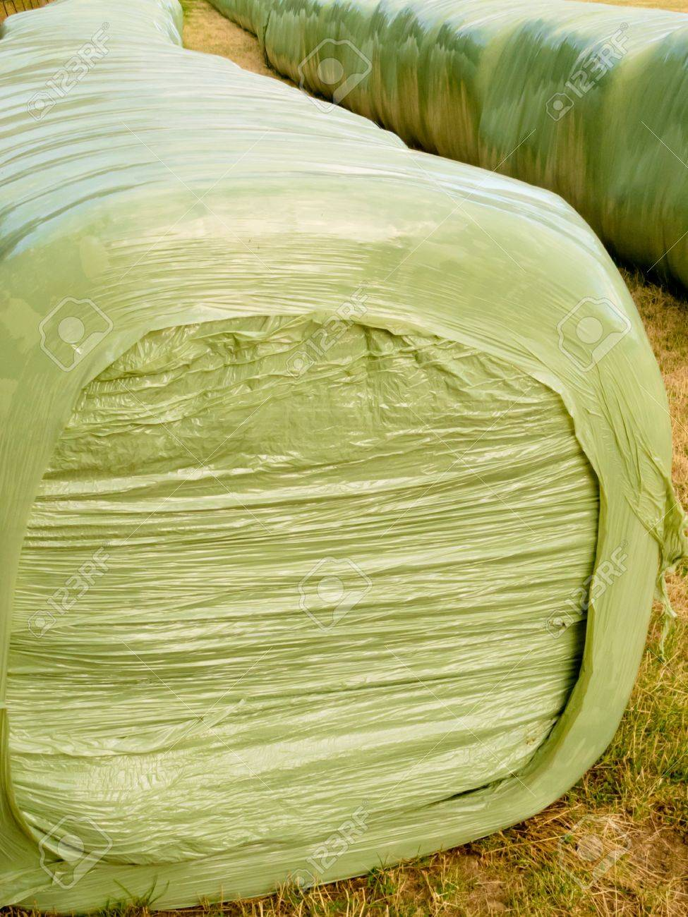 Rows of stacked silage or haylage bales, hay sealed in plastic