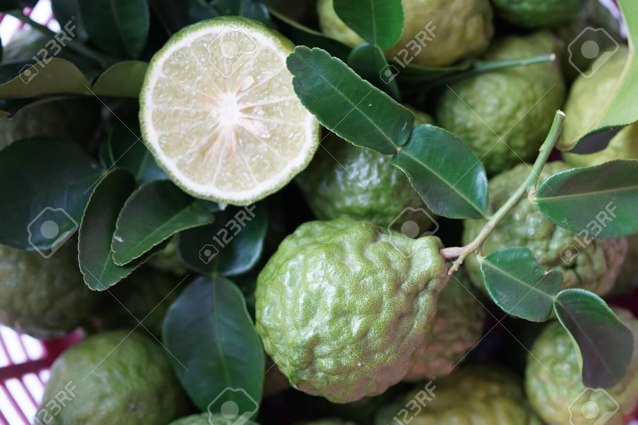 Fresh green bergamot Thai herb for spa and hair treatment , hair loss problem, hairfall control, Nutrition organics product - 132638598