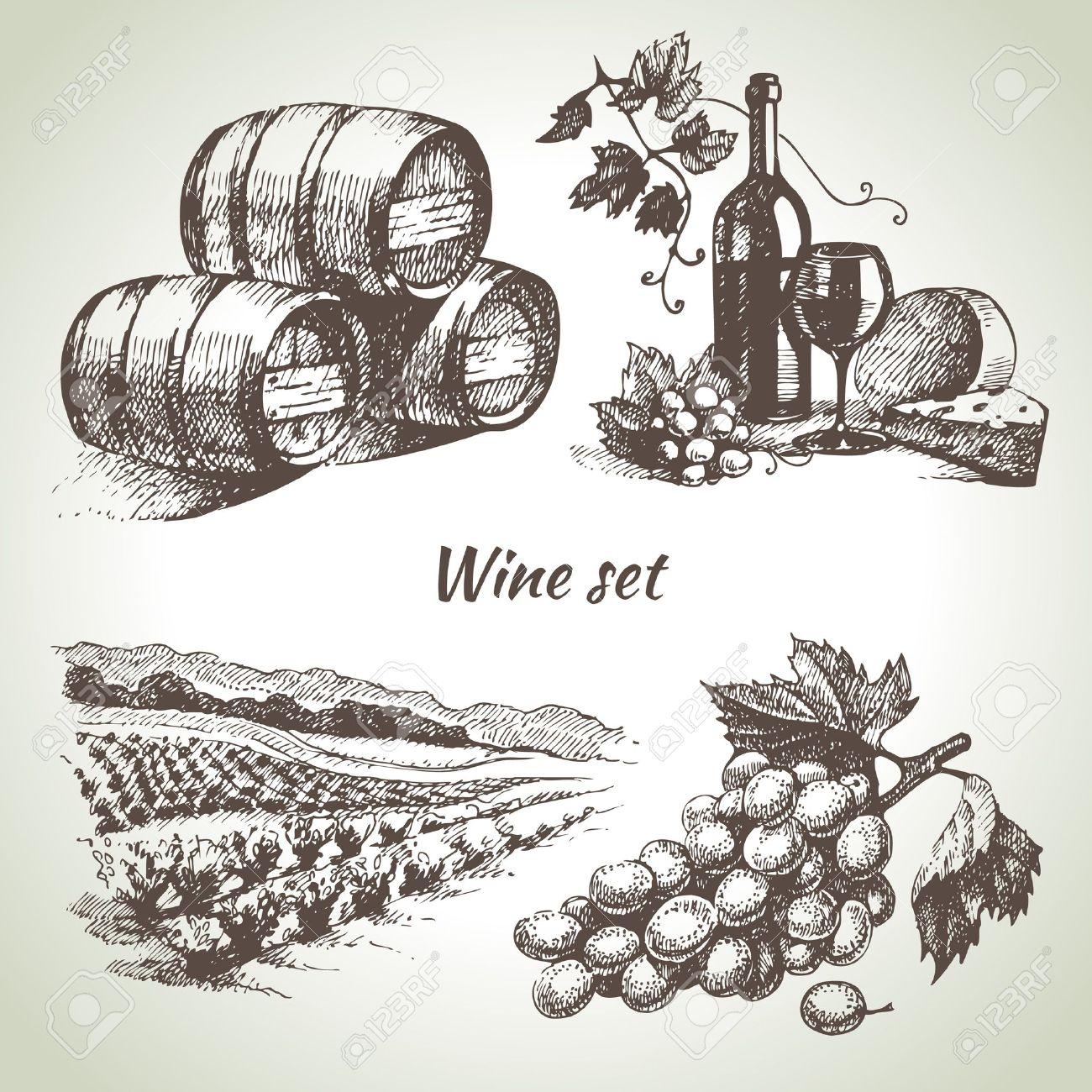 Hand drawn vector wine set Stock Vector - 20472615