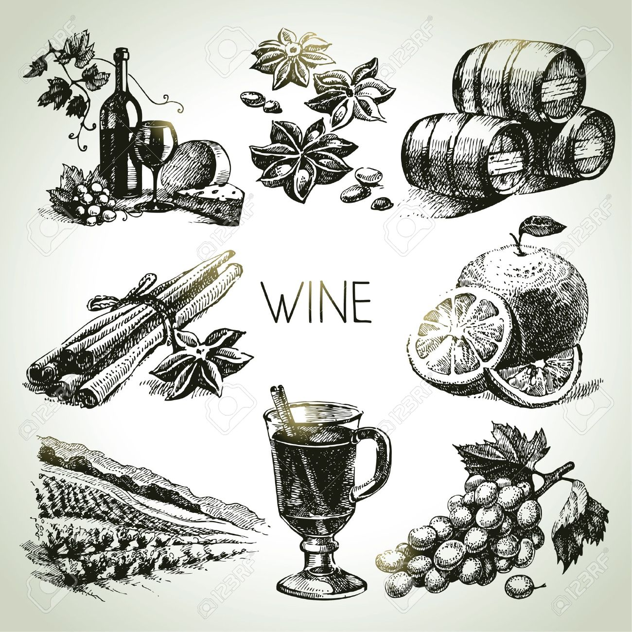 Hand drawn vector wine set Stock Vector - 21709811