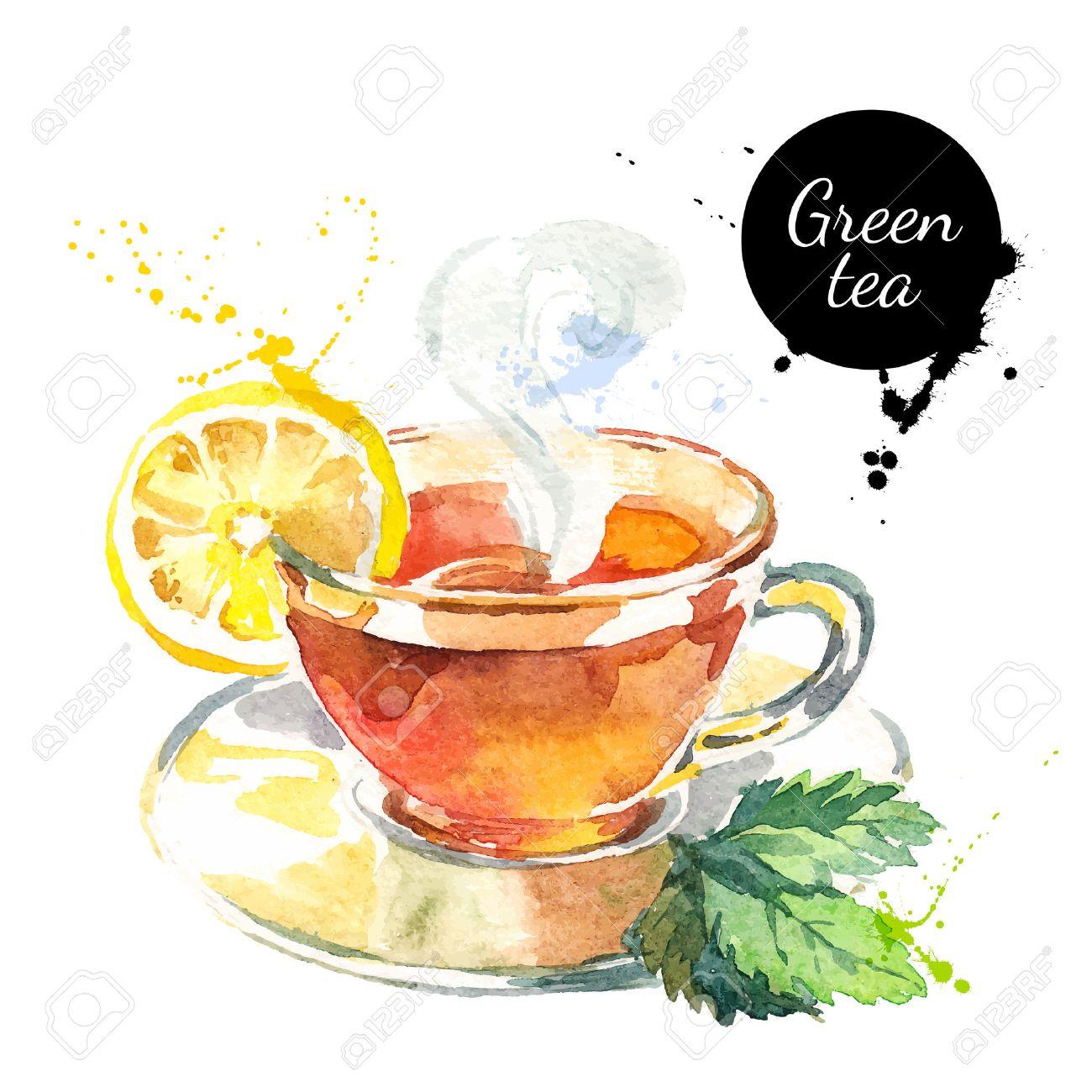 Watercolor hand drawn painted tea vector illustration. Menu design - 40912934