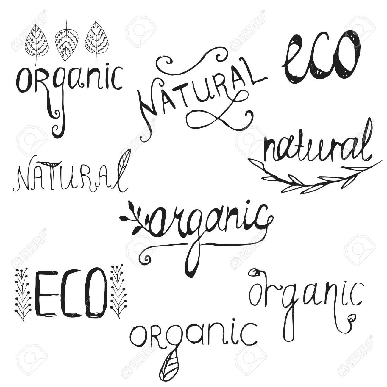 Elementos De Diseno De Letras Plantillas De Diseno Natural Organico