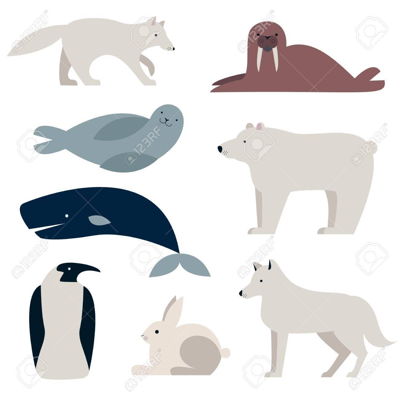 Polar Ártico Y Animales Conjunto De Vectores. Oso Polar, Pingüino ...