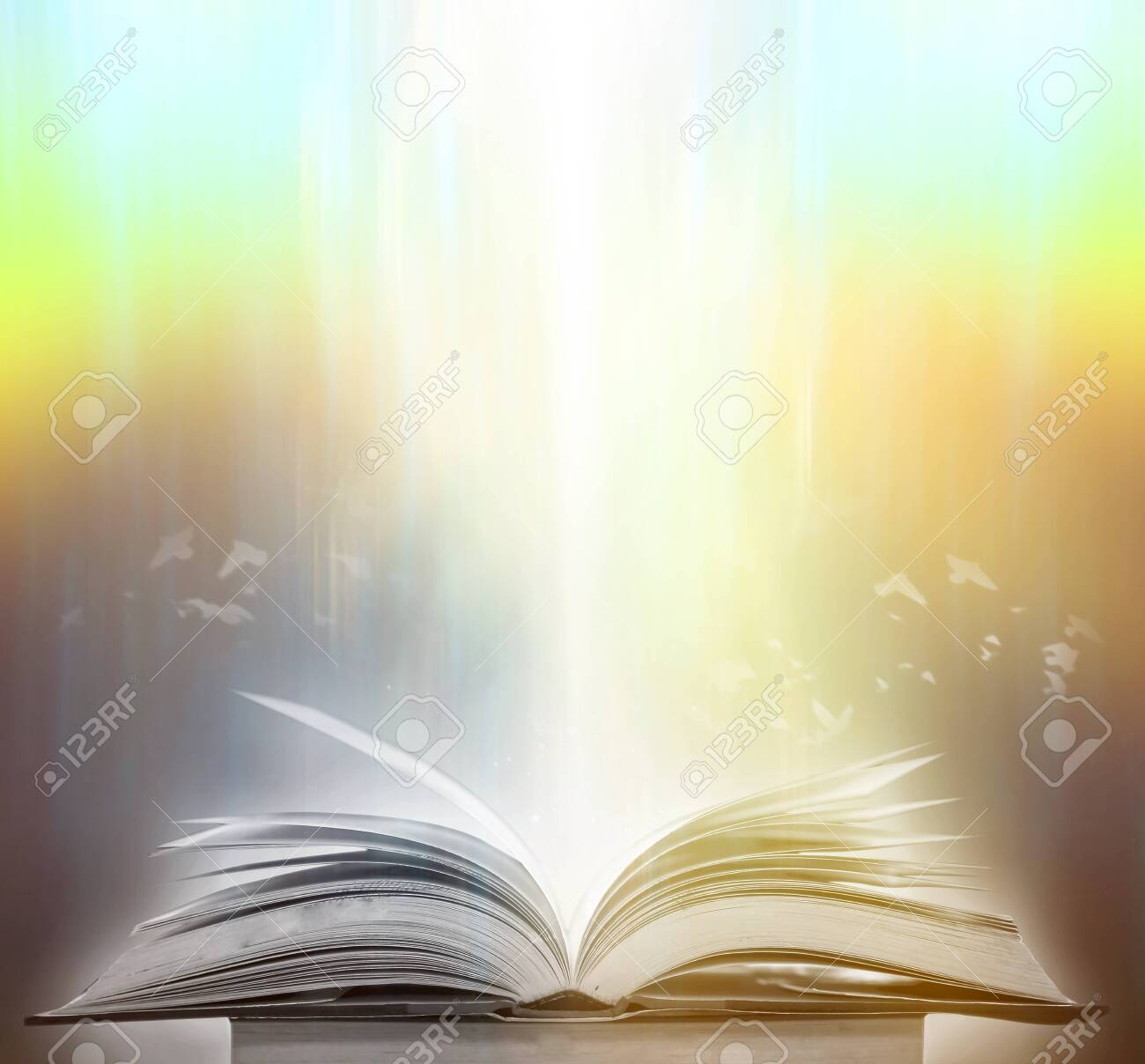 The blurred book that is bewitched with magic, the magic light in the dark, with the bright light shining down as the power to search for knowledge. For research and use as a blurred background - 137059146