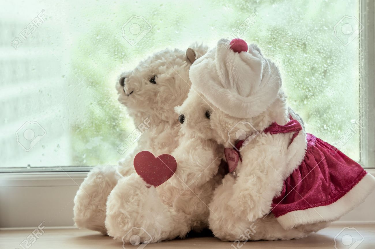 couple teddy bears in love s embrace sitting in front of a rainy
