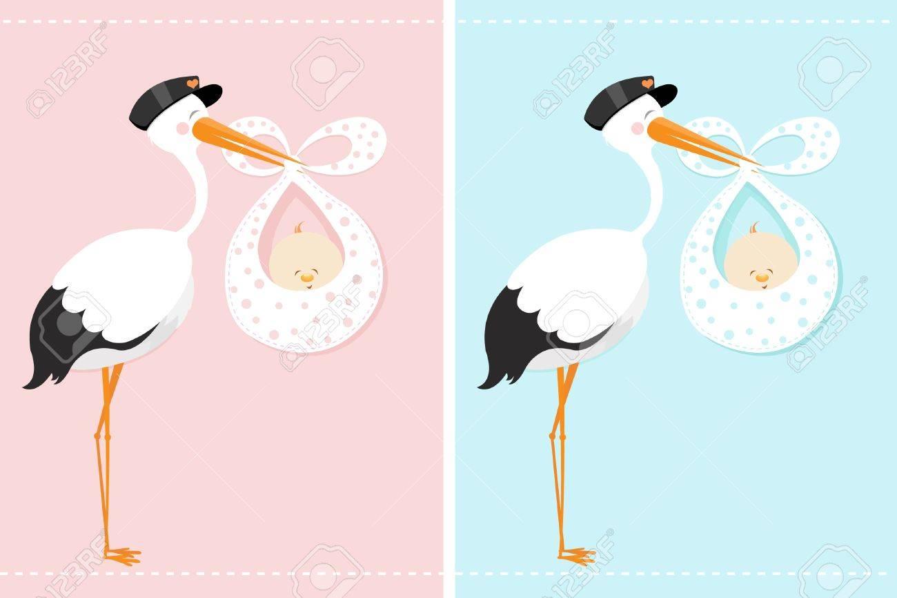Cigogne Et Bébé cigogne offrant un bébé clip art libres de droits , vecteurs et