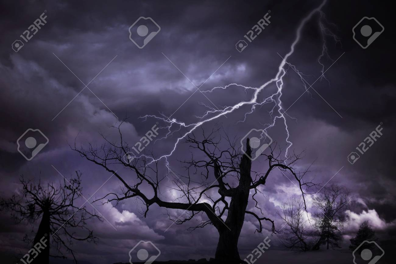 Interesting sky with grey clouds Stock Photo - 8175137