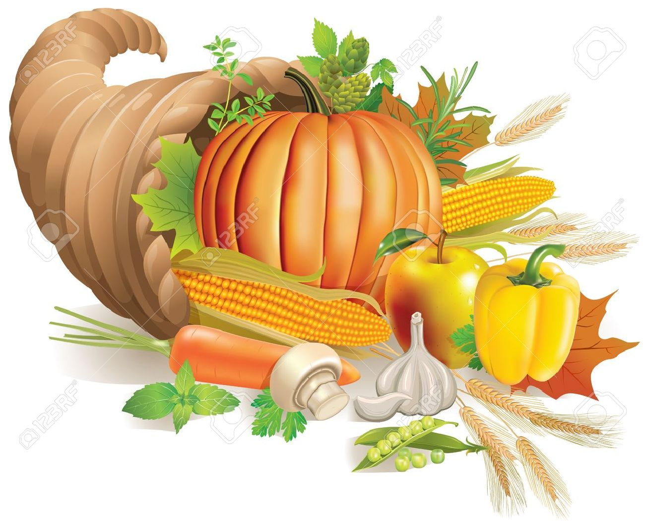 Buy Horn Thanksgiving pictures picture trends