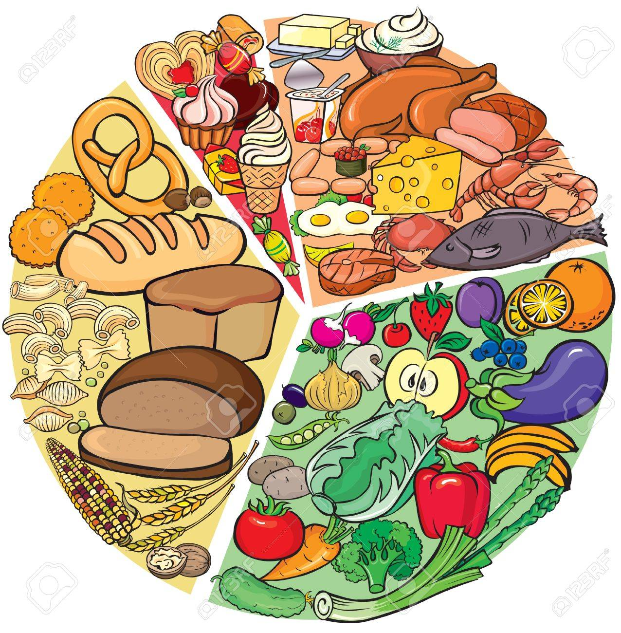 Protein Carbohydrate Diet Stock Vector - 18024252