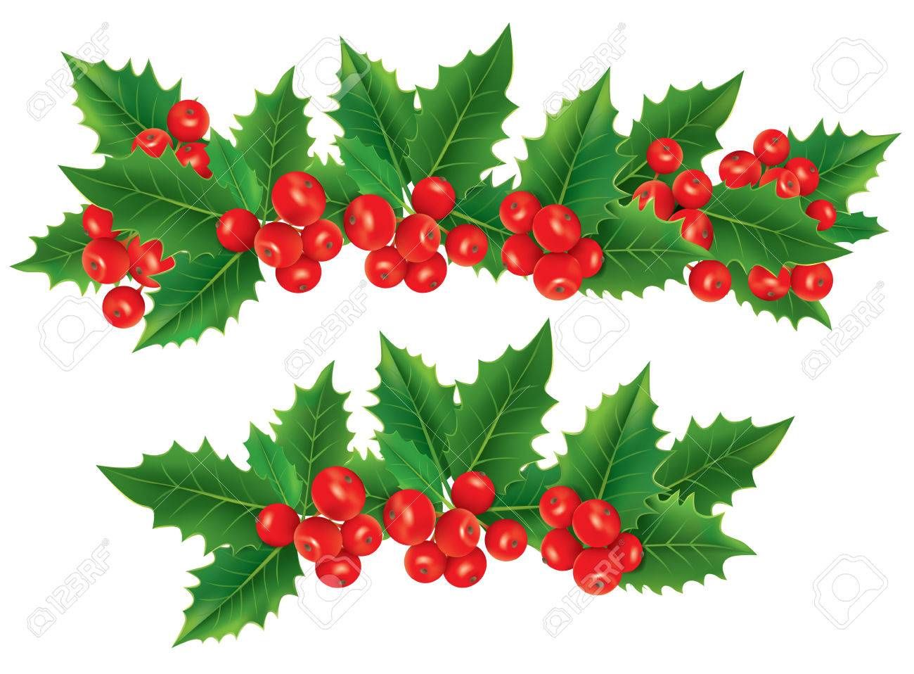 Christmas Garland Of Holly Berries Contains Transparent Objects