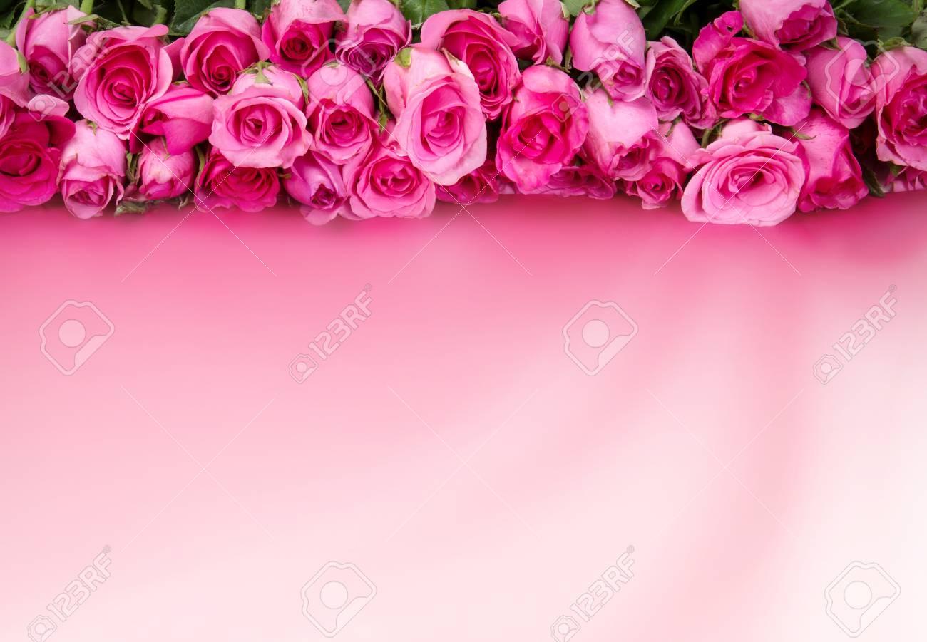 Frontière De La Belle Rose Douce Rose Fraîche Pour Lamour Romantique Valentine Background