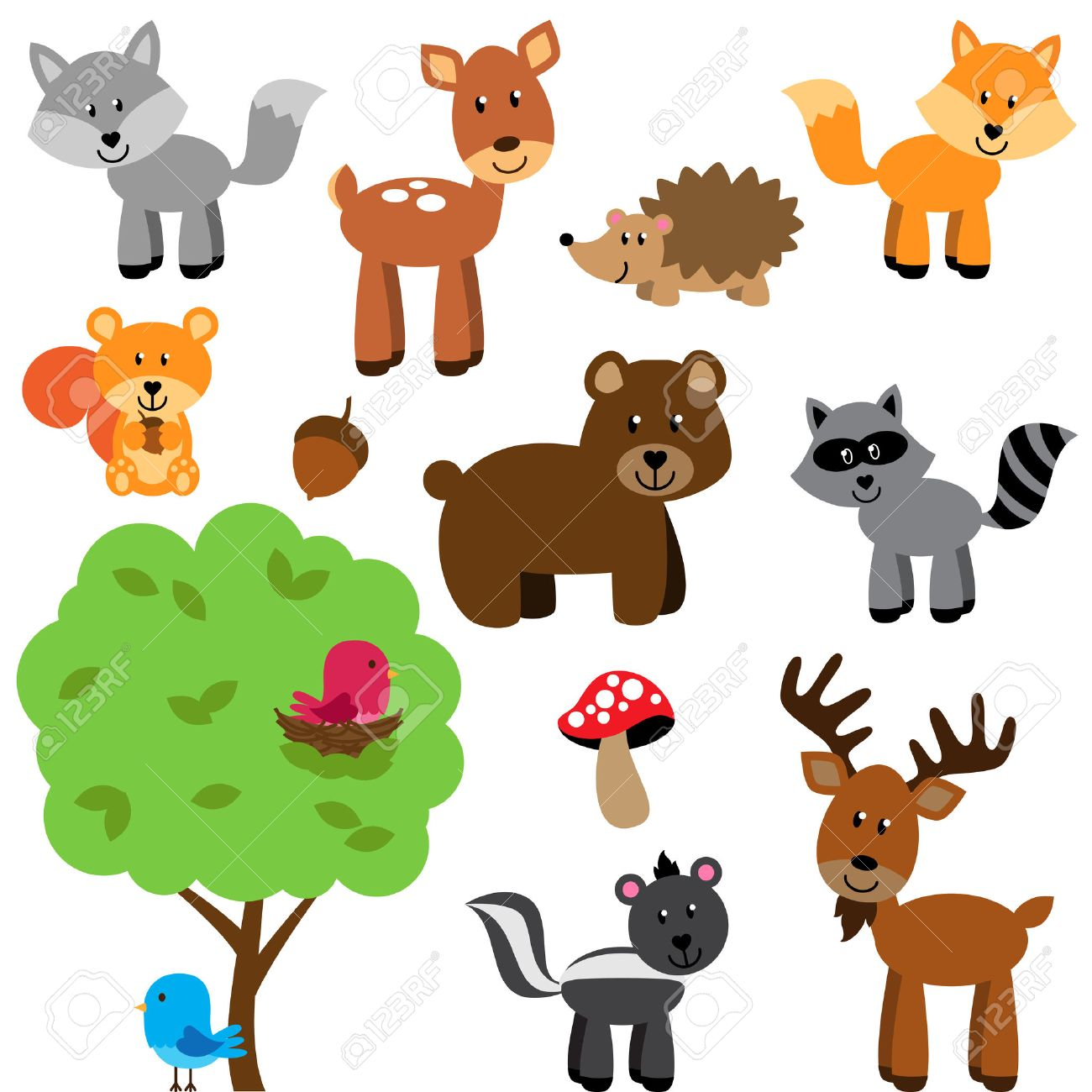 Vector Set of Cute Woodland and Forest Animals - 29966253