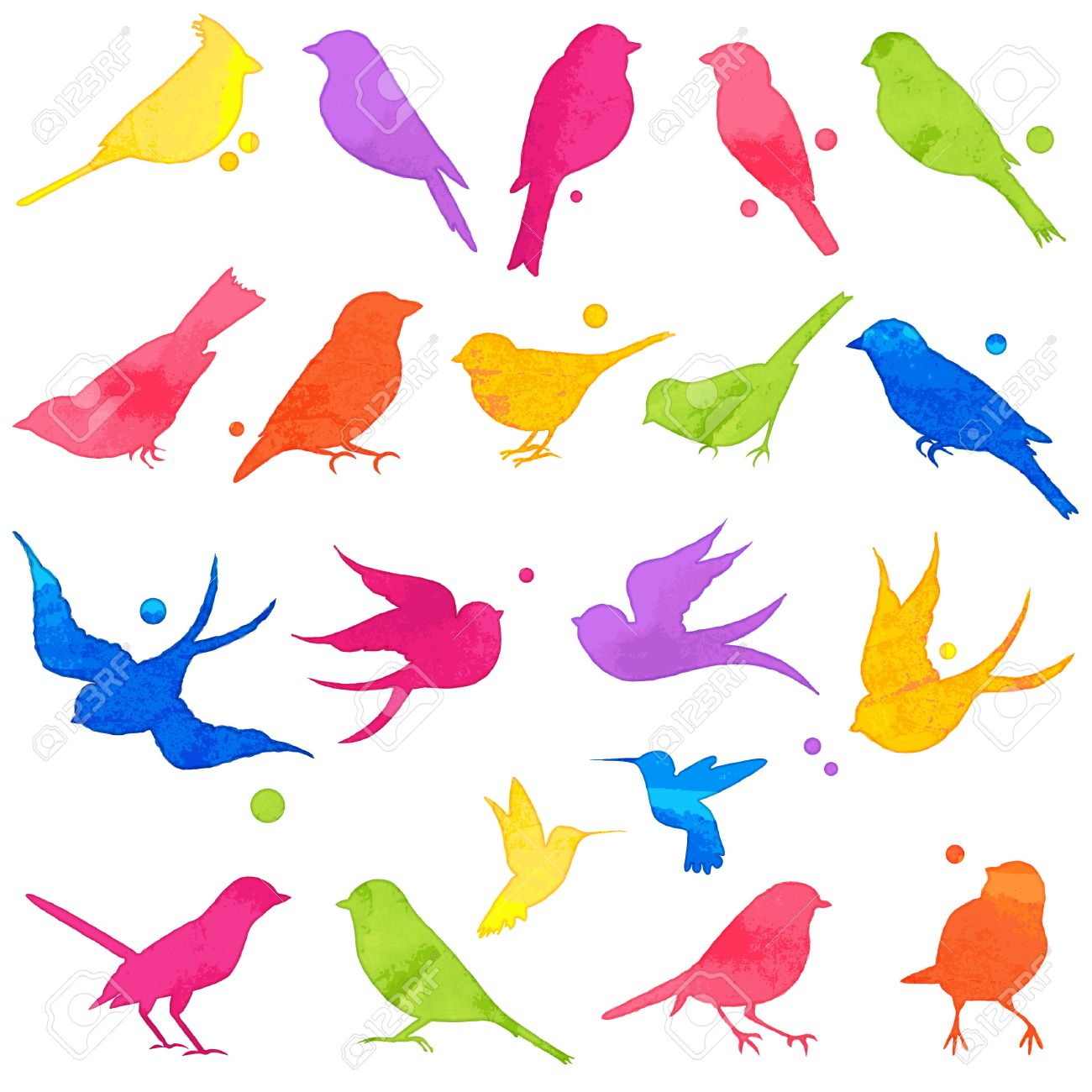 Vector Collection of Bright Watercolor Bird Silhouettes - 43151730