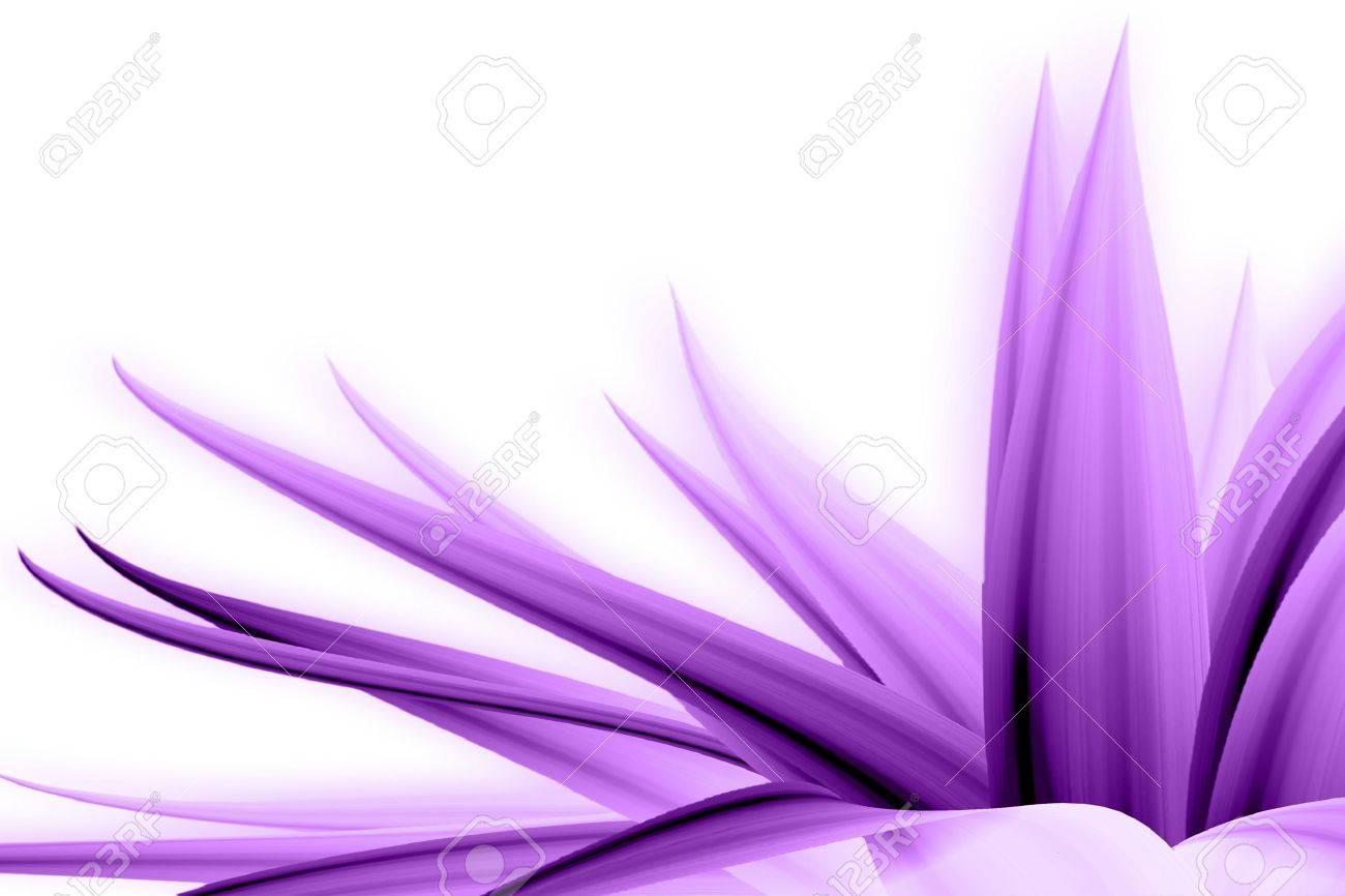 flower address Stock Photo - 10292175