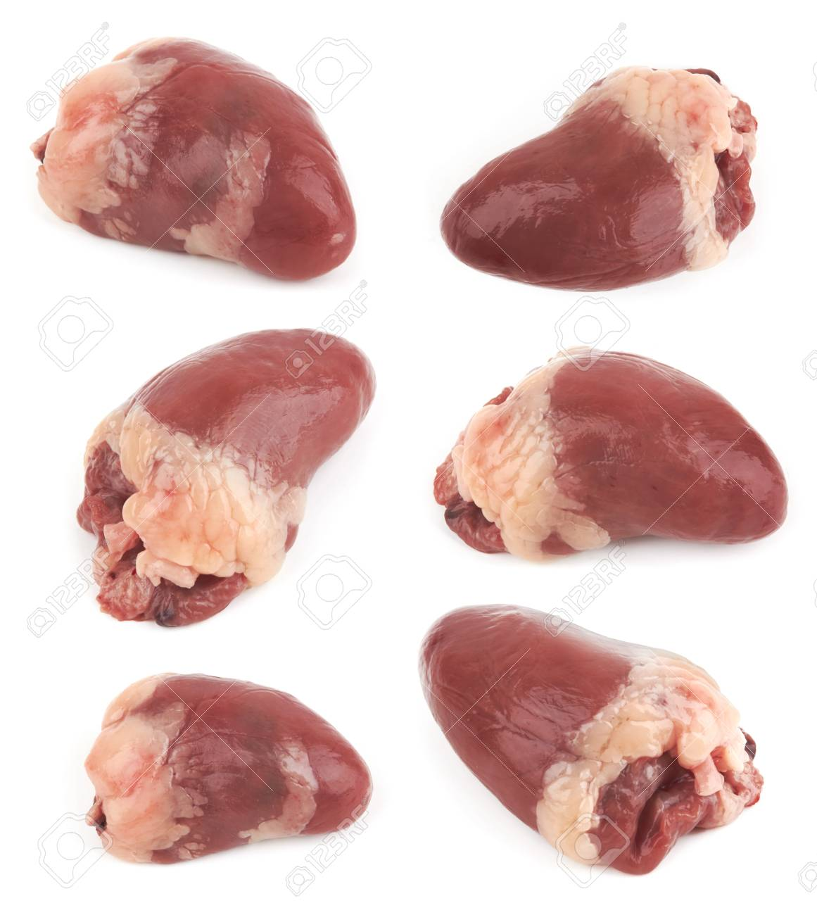Raw Chicken Heart Isolated On White Background Stock Photo Picture And Royalty Free Image Image 100868499