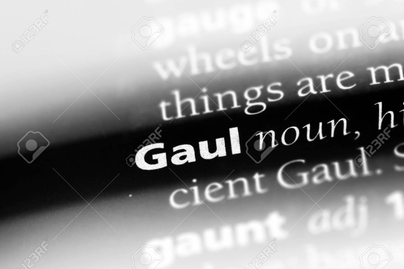 gaul word in a dictionary  gaul concept